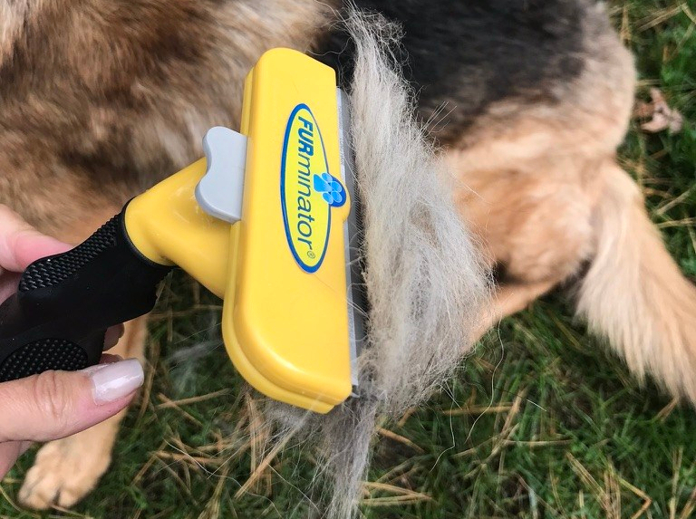 FURminator Dog Brush for Shedding Dogs