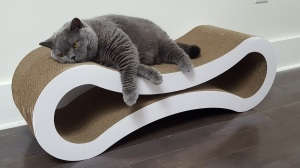 Deluxe-Cat-Scratcher-Lounge-by-PetFusion-4