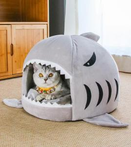 sharkbed