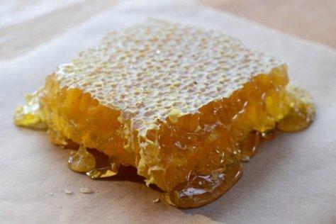 savannahbee honey