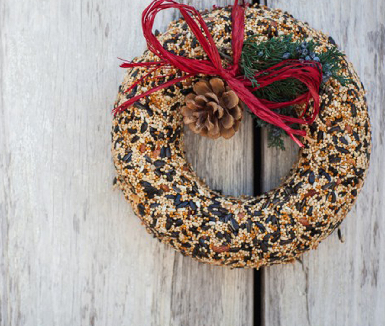 Mr. Bird Bird Seed Wreaths and Houses